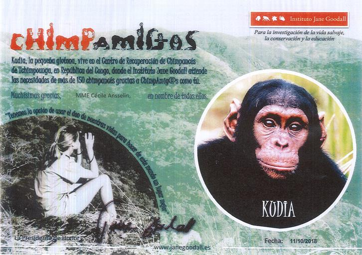 kodia zoo santander